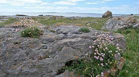 La côte du Burren près de Doolin